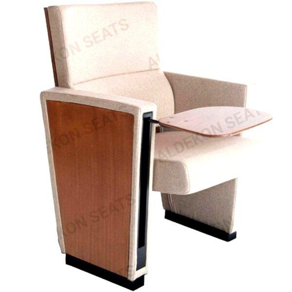 aydin-konferans-koltugu-1